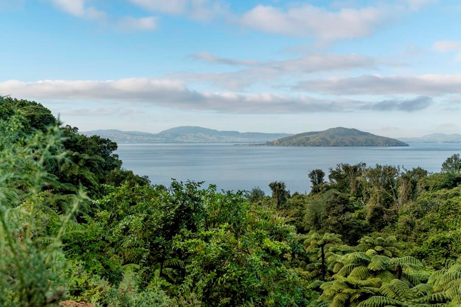 Positive step for Lake Rotorua clean up