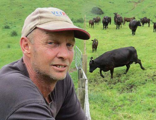 Rotorua farmers dodge bullet